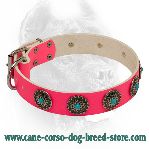 Stud Decorated Pink Leather Dog Collar for Walking
