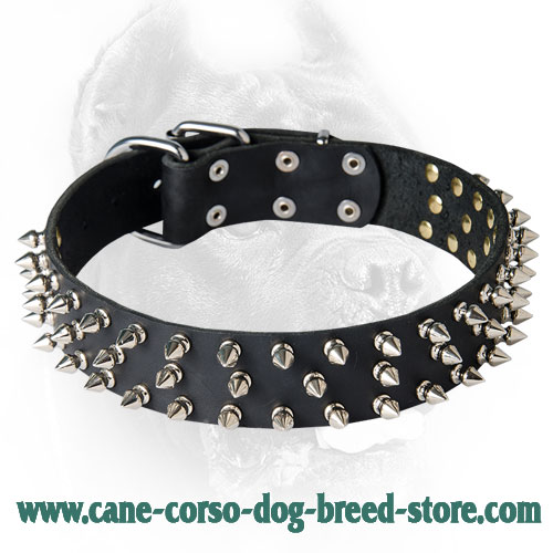 Wide Leather Spiked Dog Collar - Fashionable Design