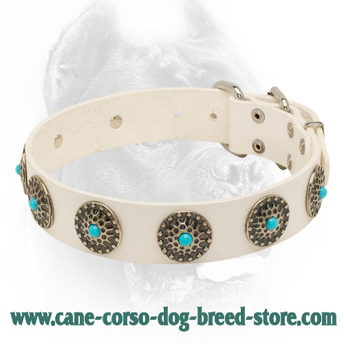 Exclusive White Leather Dog Collar with Conchos and Blue Stones