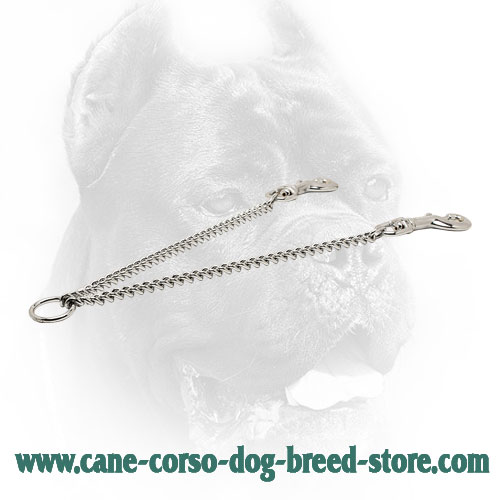 Durable Chrome Plated Cane Corso Coupler