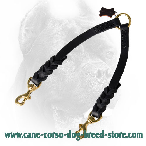 Leather Cane Corso Coupler with Decorative Braids
