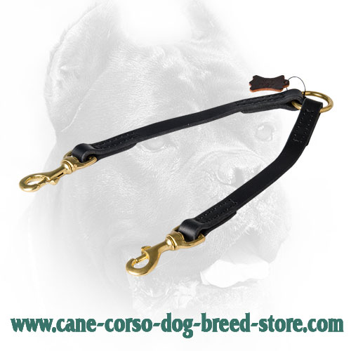 Cane Corso Coupler Stitched for Better Durability