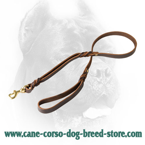 Leather Cane Corso Leash with Comfortable Handle