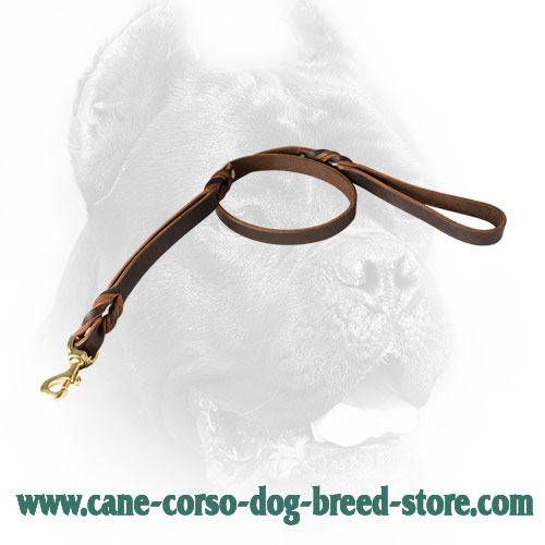 Cane Corso Leash with Decorative Braids