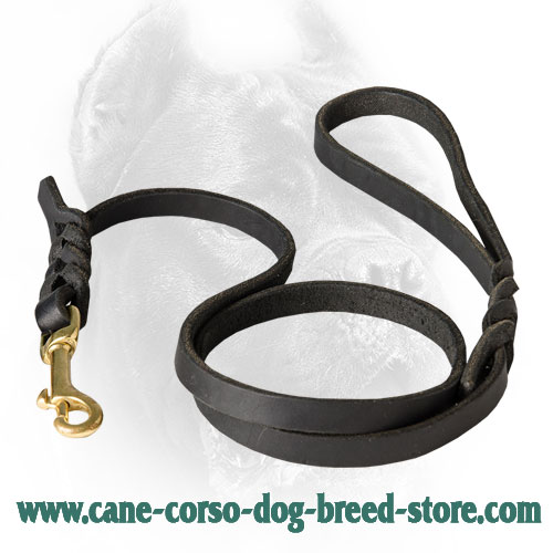 Cane Corso Leash with Fancy Braids