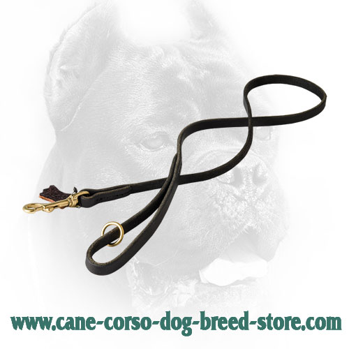 Leather Cane Corso Leash with Brass Floating O-Ring