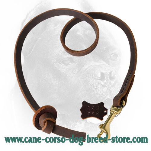 Leather Cane Corso Leash with Circle Handle