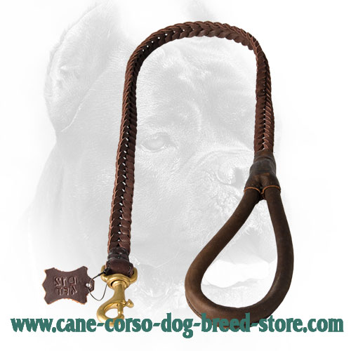 Cane Corso Leash with Soft Leather Handle