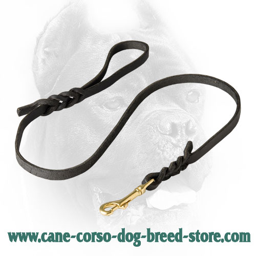 Extra Strong Cane Corso Leash for Daily Use
