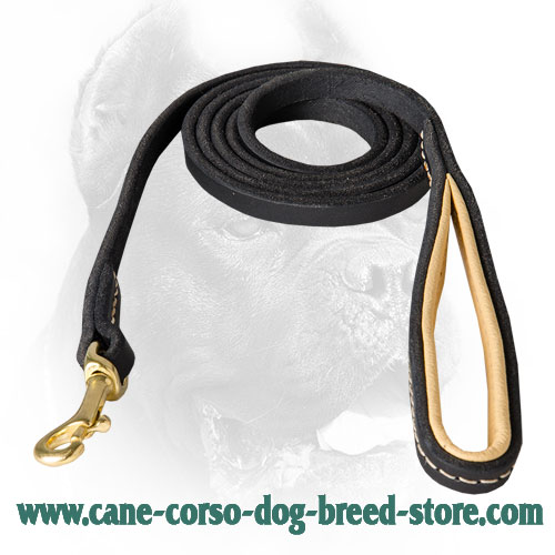 Stitched Design Cane Corso Leash with Nappa Padded Handle