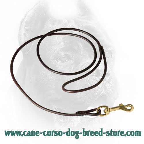Round Cane Corso Leash for Dog Shows