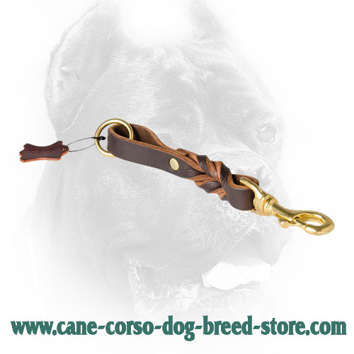 Braided Design Cane Corso Leash