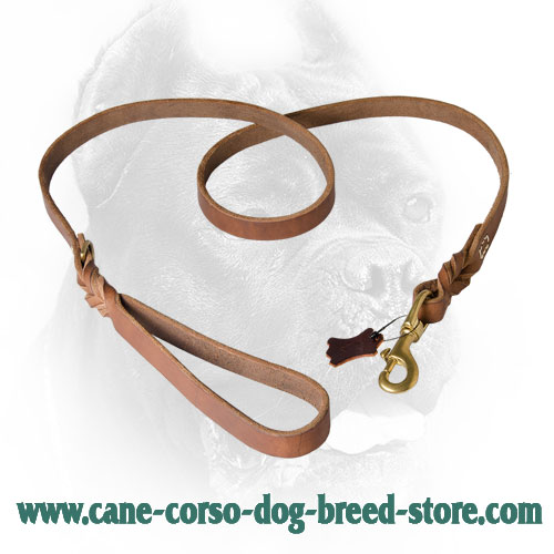 Leather Cane Corso Leash with Strong Snap Hook