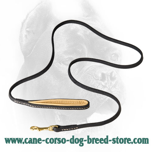 Strong Leather Cane Corso Leash