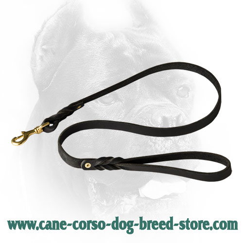 Cane Corso Leash  for Different Activities
