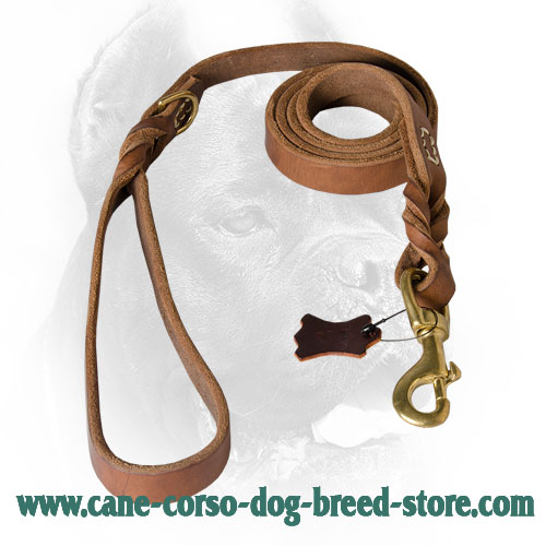 Braided Cane Corso Leash