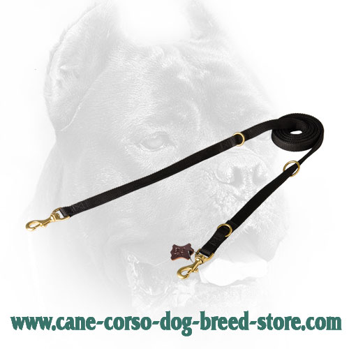 Universal in Use Nylon Cane Corso Leash