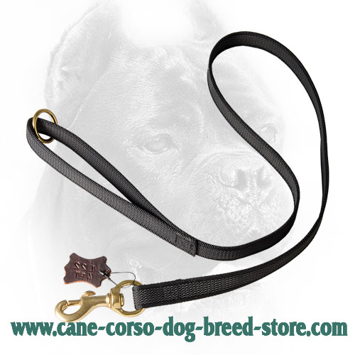 I-Grip Cane Corso Leash Made of Nylon