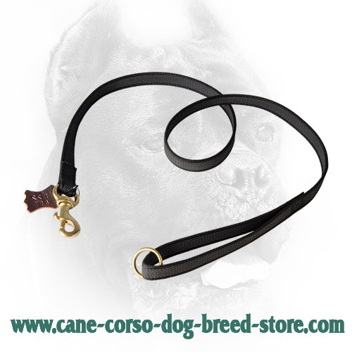 Extra Strong Nylon Cane Corso Leash