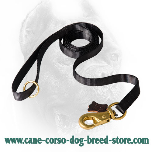 Universal in Use Cane Corso Leash