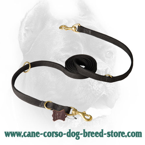 Cane Corso Leash with Snap Hook