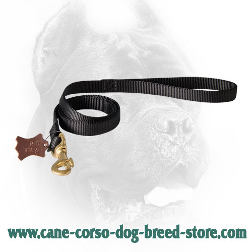 Nylon Cane Corso Leash for Military Service