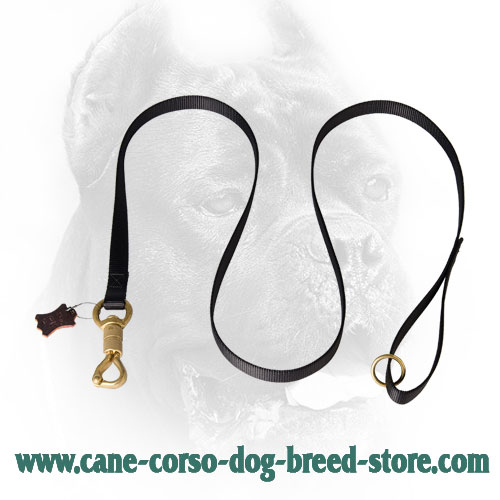 Strong Cane Corso Leash for Police Work