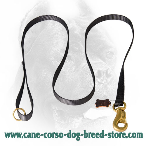 Nylon Cane Corso Leash with Gold-Like Hardware