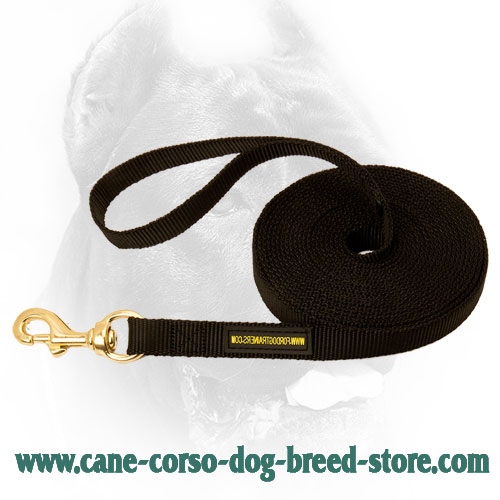 Cane Corso Leash for Dog Training
