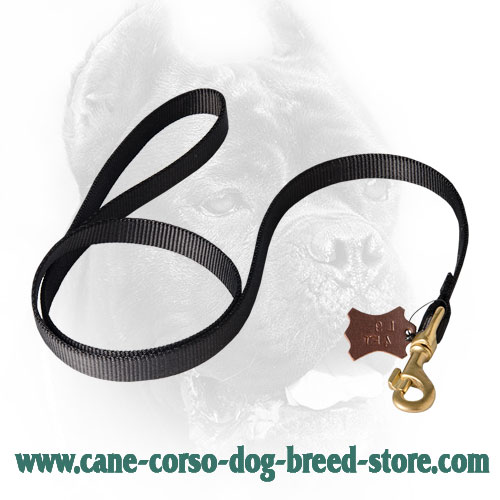 Multipurpose Cane Corso Leash for Tracking Work