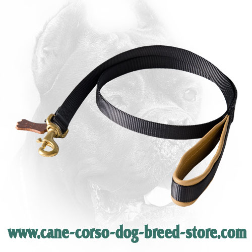 Strong Cane Corso Leash with Soft Comfy Handle