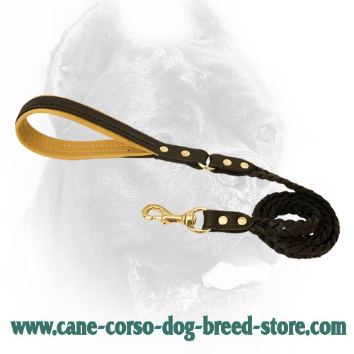 Brand leather dog lead for large dog breeds
