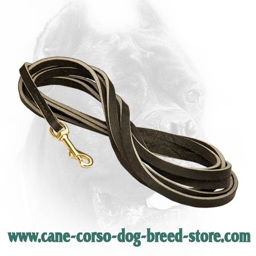 Best dog leash ever