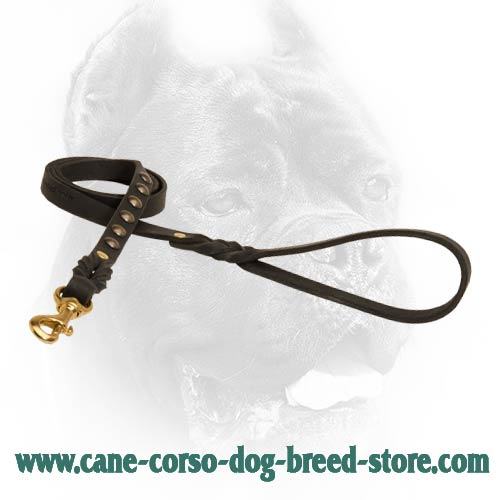 Unique leather dog lead