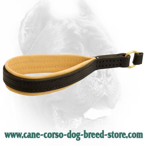 Superior leather leash with convenient handle