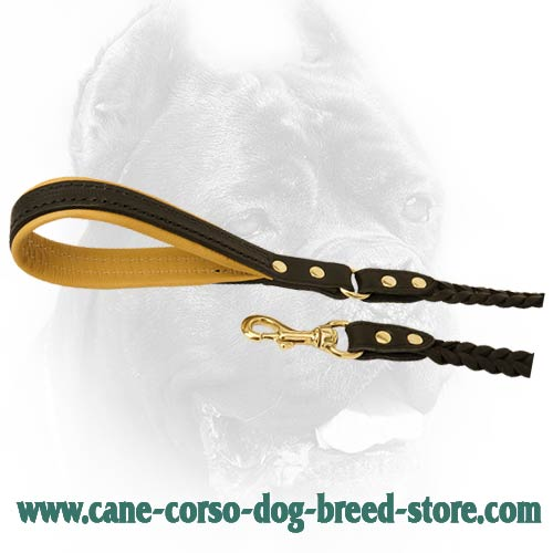Best leather leash with handle and snap hook