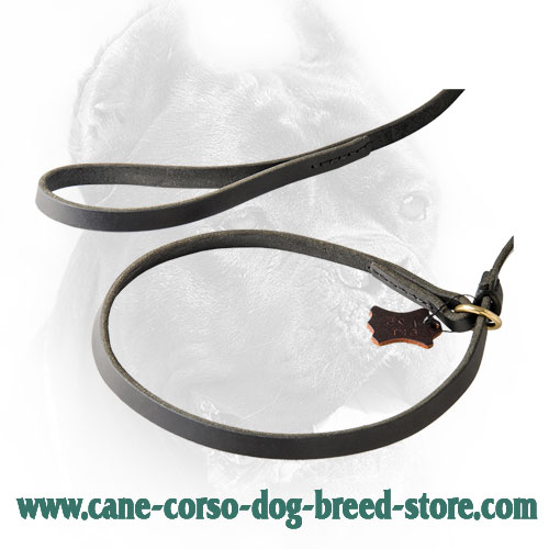 Brass O-Ring on Leather Cane Corso Combo