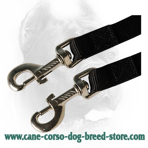 Durable Snap Hooks on Nylon Cane Corso Coupler