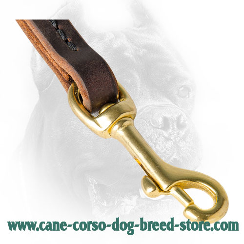 Brass Snap Hook on Leather Cane Corso Leash