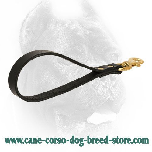 Short black leather dog lead stitched for durability