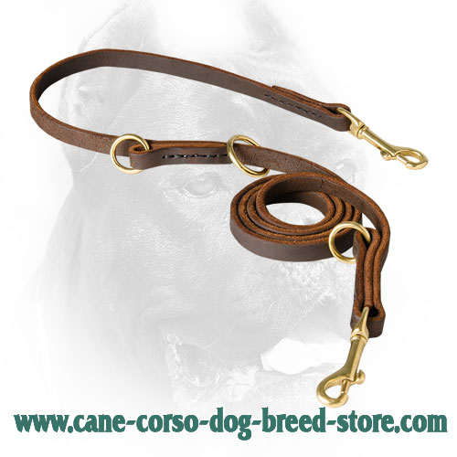 Walking Training Cane Corso Leash Adjustable with 3 O-Rings