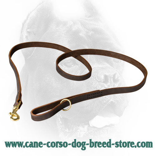 Leather Cane Corso Leash with Smooth Surface