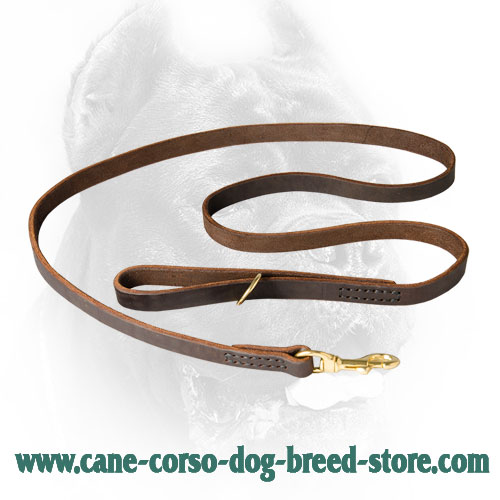 Leather Dog Leash for Management of Cane Corso