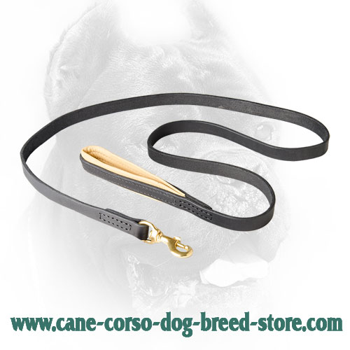 Leather Dog Leash for Training, Walking Cane Corso