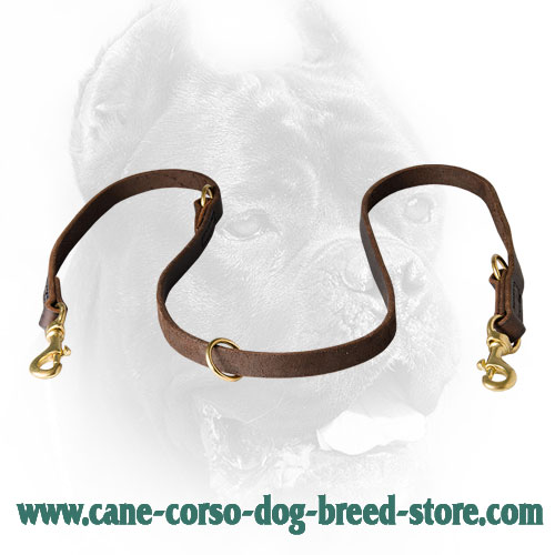 Unique Leather Dog Leash for Cane Corso