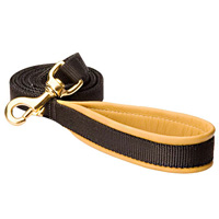 Dog nylon leash for tracking, training, walking with support material on the handle