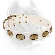 White Leather Dog Collar with Oval Brass Plates