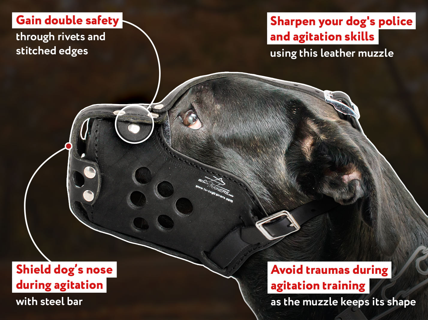 Military Design Leather Cane Corso Muzzle - Pro Training and Walking