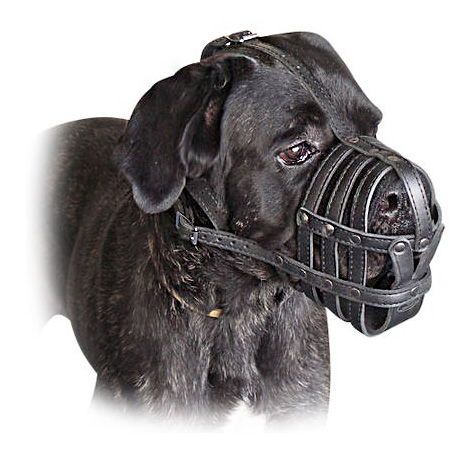 Cane Corso Everyday Light Weight Super Ventilation muzzle