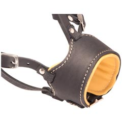 Nappa padded muzzle made of select leather
